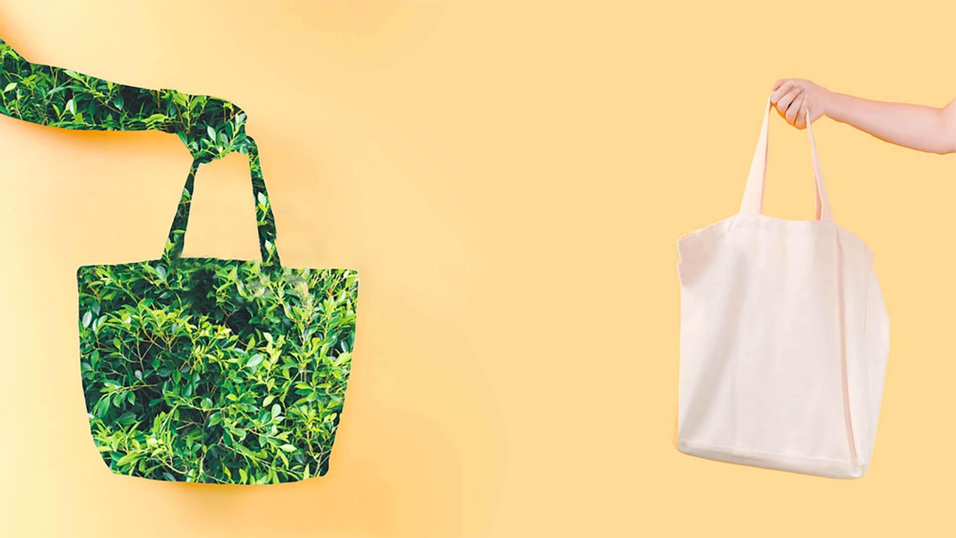 eco shopper