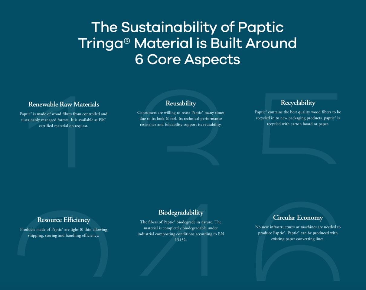 paptic 6 dettagli